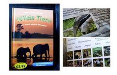 'Lesen und Entdecken - Wilde Tiere'