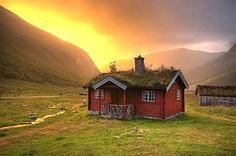 I just love this fairytale tiny log cabin during a sunset (or sunrise?) by the mountains somewhere in Sweden with a living roof.  What's your dream tiny h