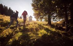 10 Walking Challenges to Keep it Exciting Fitness Tips For Men, My Fitness Pal, Fitness Motivation, Walking Exercise, Walking Workouts, Losing Weight Tips, Weight Loss, Lose Weight, Interval Training Workouts