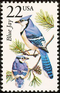 Blue Jay stamps - mainly images - gallery format