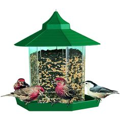 447 best Bird feeders images on Pinterest   Bird feeders  Birdhouses     wild bird feeders walmart
