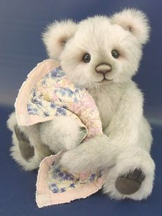 .teddy and his blanket                                                                                                                                                                                 Plus