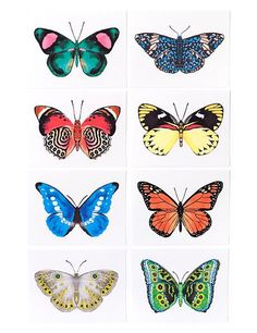 This set features an assortment of vibrantly watercolor butterflies. Perfect everyday card from thank you notes to birthdays. Box set of 8 folded cards, 8 des illustration Assorted Butterfly Card Set