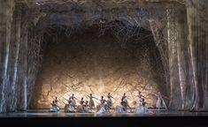 Artists of Birmingham Royal Ballet as Snowflakes in The Nutcracker; Bill Cooper, Ballerina Silhouette, Dance Magazine, Ballet Companies, Royal Ballet, Timeless Beauty, Birmingham, Wonders Of The World, Ballet Dance