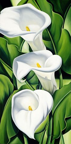 Lillies by Catherine Abel. Oil on canvas