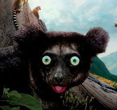 """""""Island of Lemurs: Madagascar"""" is now showing at the California Science Center in 3D IMAX, and it's a must-see movie that tells the incredible true story of nature's greatest explorers—lemurs. Lemurs arrived in Madagascar as castaways millions of years ago…"""