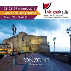 #vitignoitalia #napoli #fonzone #wine #winelovers