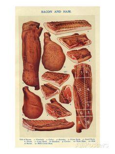 Bacon and Ham, Isabella Beeton, UK Poster at AllPosters.com