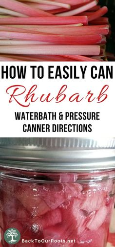 How to Easily Can Rhubarb at Home