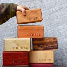 Lovely children's blocks that name the tree and the colour of the wood.