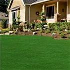 Image of a beautiful green lawn in front of a house - zoysia grass uses less water Backyard Hammock, Backyard Landscaping, Backyard Farming, Green Lawn, Green Grass, Pet Grass, Zoysia Grass, Farm Nursery, Flats