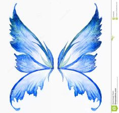 Fairy Wings | Blue fairy wings watercolor hand draw painting.