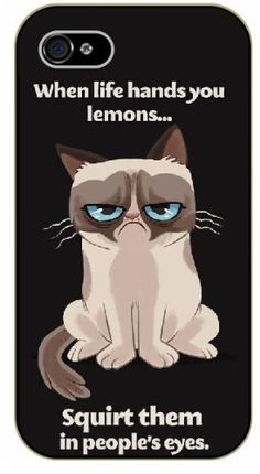 "iPhone 4 / 4s Grumpy cat ""When life hands you lemons... squirt them in people's eyes - NAME - black plastic case / Inspirational and Motivational Surelock Ideas TM http://www.amazon.com/dp/B00KEUC63K/ref=cm_sw_r_pi_dp_XHO5tb04Z7AMW"