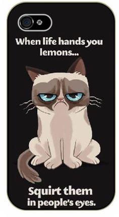 "iPhone 4 / 4s Grumpy cat ""When life hands you lemons... squirt them in people's eyes - NAME - black plastic case / Inspirational and Motivational Surelock Ideas TM http://www.amazon.com/dp/B00KEUC63K/ref=cm_sw_r_pi_dp_XHO5tb04Z7AMW"