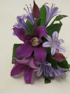 Clematis and Agapanthus wrist corsage