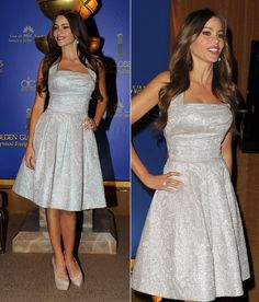Sofia Vergara in a David Meister signature dress.