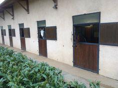European Stallions resort. France