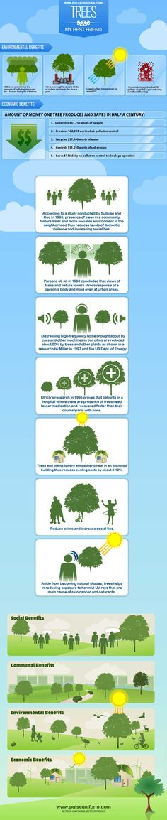 Trees are very important in our planet. This infographic shows the many things that a tree contributes to us and to our mother Earth.