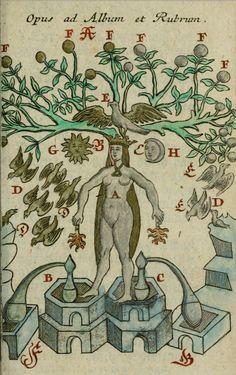 Alchemy: Johann Michael Faust. Compendium Alchymist, Pandora Explicata & Figuris Illustrata, 1706. An #Alchemy artwork.