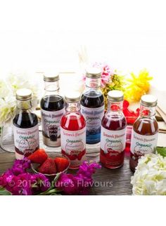 Natures Flavors Sample Pack of Organic Snow Cone Syrups 1 Pack