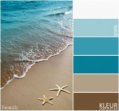 BEACH – color palette blue and brown. Sea, sand and starfish.