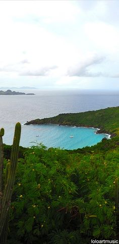 Beautiful view of Colombier Beaches, St. Barths - French West Indies Find more amazing St. Barth photos at my board https://www.pinterest.com/saintbarthcom/ or through my insider tips at www.saintbarth.com #stbarth #stbarths