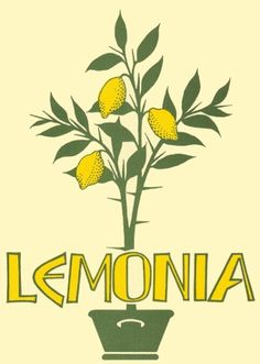 Lemonia Greek Restaurant