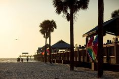 Check out the Tampa Bay Bucket List for a collection of family-friendly things to do, and places to see in Clearwater, St. Petersburg and more in Florida. Visit Florida, Florida Vacation, Florida Travel, Florida Beaches, Vacation Spots, Vacation Ideas, West Virginia, Nevada, Alabama