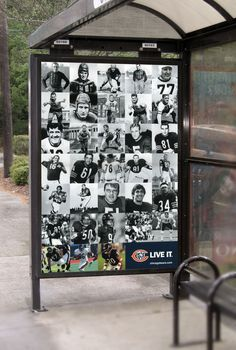 CHICAGO BEARS, PSL BROCHURE & OOH POSTERS by Megan Reed, via Behance