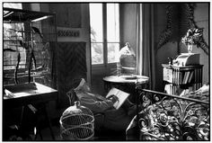 "FRANCE. Alpes-Maritimes. Vence. February 1944. French painter Henri MATISSE at his home, villa ""Le Rêve"". Фото: Анри Картье Брессон"