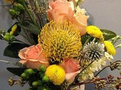 Back Bay Florist offers fresh flower delivery Boston. Save money by sending flowers directly with a Local Florist. Boston Florist, Local Florist, Types Of Flowers, Fresh Flowers, Fresh Flower Delivery, Dish Garden, Special Flowers, Beautiful Roses, Different Colors