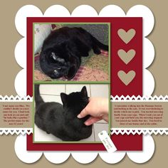 Remembering a pet scrapbook layout using My Digital Studio software from Stampin' Up!