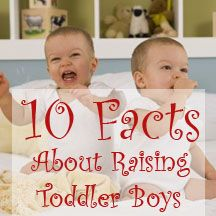 Ten facts about raising toddler boys... everything from climbing to outsmarting you to food fights