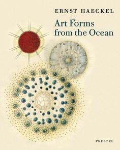 Art Forms from the Ocean: The Radiolarian Prints of Ernst Haeckel by Olaf Breidbach http://www.amazon.co.uk/dp/3791333275/ref=cm_sw_r_pi_dp_d21cub1QE8325