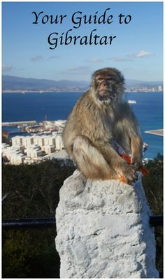Gibraltar Holidays, A guide to all things to do and see, including where to stay, and day trips. Places To Travel, Places To See, Time Travel, Travel Destinations, Places Around The World, Travel Around The World, Spain Travel, Andalusia Travel, Viajes