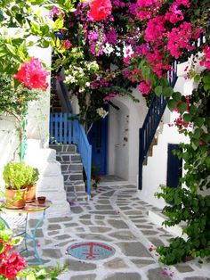 Break up the cement for 'flagstones' and put in white gravel to simulate this look! bright white stucco, blue on doors & windows. Gray and mint on trim. Tons of fuscia, bougainvillea, etc. for hot pink accents.
