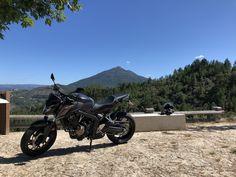 Cb 650f, Honda Cb, Motocross, Motorcycle, Vehicles, Motorbikes, Dirt Biking, Motorcycles, Car