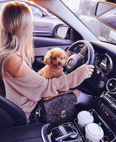 Women Fashion Style New Collection For Louis Vuitton Handbags, LV Bags to Have Louis Vuitton Taschen, Louis Vuitton Alma, Louis Vuitton Handbags, Lv Handbags, Cute Baby Animals, Animals And Pets, Vintage Louis Vuitton, Cute Puppies, Cute Dogs