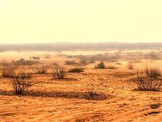 pustynia bledowska