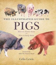 Raising Pigs 101