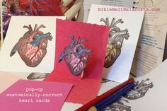 Anatomical Heart Valentines for Passive-Aggressive Jewish Moms (or if you are sick of craft foam)