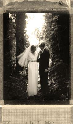Culver City Wedding