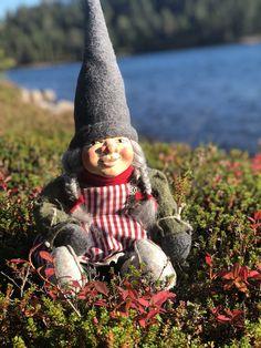Gnomes, Fairies, Christmas Time, Elf, Dolls, Design, Faeries, Baby Dolls, Puppet