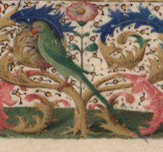Titre :  Horae ad usum Pictaviensem.  Date d'édition :  1455-1460  NAL 3191 Folio 26r