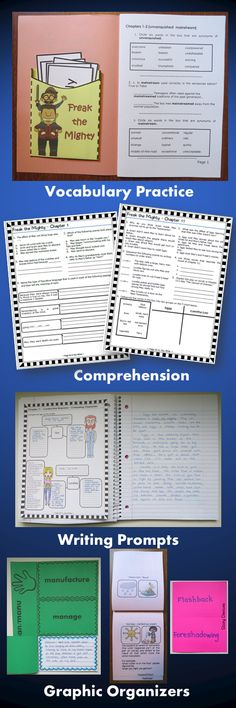 Freak the Mighty Interactive Notebook and Activity Unit contains graphic organizers for an interactive notebook and game activities covering vocabulary, constructive response writing, and skill practice to use with the novel Freak the Mighty by Rodman Philbrick. $