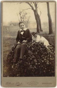 Cabinet Card Young Scholar Dog Jack Russell Terrier Bradford Photo C 1890s UK | eBay