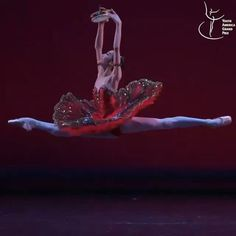 Ballet Gif, Ballet Dance Videos, Ballet Dancers, Nike Dance, Ballet Dance Photography, Shall We Dance, Ballet Fashion, Weird Dreams, Dance Poses