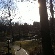 Central park by the lake!