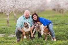 English Bulldog family portrait session by TréCreative Film&Photo in Chico California http://trecreative.com/