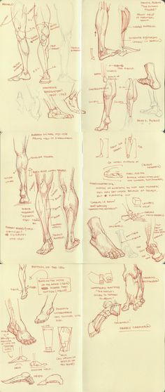 Enjoy a collection of references for Character Design: Legs Anatomy. The collection contains illustrations, sketches, model sheets and tutorials… This Drawing Skills, Drawing Lessons, Life Drawing, Drawing Techniques, Anatomy Drawing Practice, Human Anatomy Drawing, Learn Drawing, Drawing Studies, Art Studies